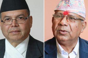 नयाँ दल दर्ता गर्दै नेपाल समूह